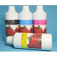 Vivid Color Eco Solvent ink