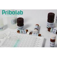 PriboFast® Aflatoxin M1 ELISA Kit