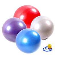 Supermarket Or Promotion PVC Yoga Ball With Pump