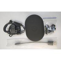 Beats Powerbeats 3 Wireless in Ear Earphone