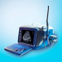 portale ultrasonic diagnostic equipment