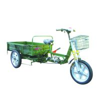 Pedal cargo electric tricycle ETC-P01