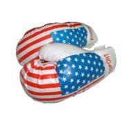 boxing set, boxing gloves thumbnail image