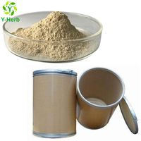 DHA Supplement Schizochytrium Algae Extract DHA Powder
