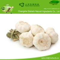 25%,50% Allicin of Garlic extract