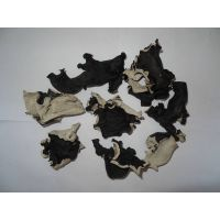 dried white back black fungus