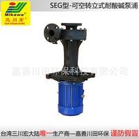 Vertical pump SEG5012/5022/5032/6522/6532/6552/7572/75102/100152 FRPP
