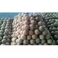 DRY COCONUT (sales3(at)vegionbiotech(dot)org)