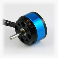permanent magnetic Brushless DC Motors