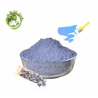 Natural colorant Butterfly pea Extract for anti-oxidation;100% soluble in water Butterfly pea Powder