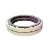 External gear /Internal gear /No-gear slewing bearing with surface coating
