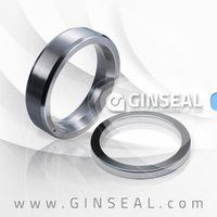 Octangonal ring joint gasket
