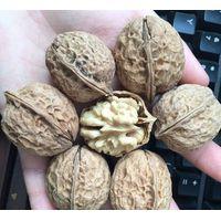 Natural walnut paper thin walnut healthy food