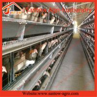 poultry farm use H type vertical chicken cage
