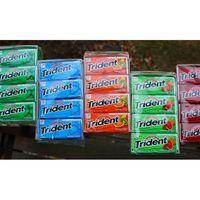TRIDENT CHEWING GUM