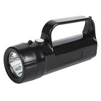 Portable high inetnsity work light