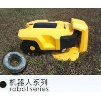 FRIENDLY robot lawn mower with CE,ROHS,WEEE.DENNA A600
