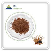 Cordyceps Mushroom Extract