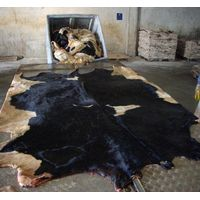 Wet Salted & Dry salted Donkey Hides and Cow Hides, cattle Hides, animal skin, Goats, Horses, Fur thumbnail image