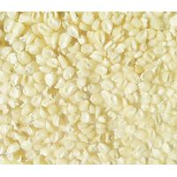 White Corn/ Maize Grade #: 1