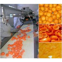stainless steel Tangerine peeling machine 0086-15838059105