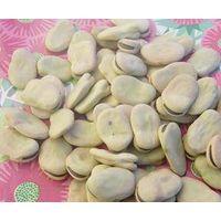 Broad Beans (Fava Beans) thumbnail image