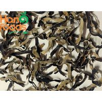 Dried white back black fungus/ wood ear mushroom