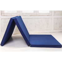 Foldable mattress sofa bed