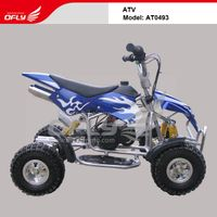 CE Approved Gas-Powered 2-Stroke Engine Quads Bike with Independent Shock Suspension