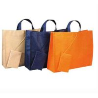 Eclogical Bag/Shopping bag  Customized as Panton Color Number