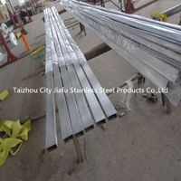 TP310s Seamless Stainless Steel Pipe