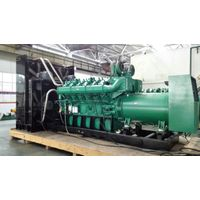 1000kw biogas generator