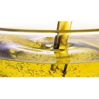 Nut Seed Oil