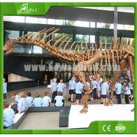 KAWAH Museum Artificial Educational Dinosaur Skeletons For Kids thumbnail image