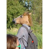 latex horse mask, party mask
