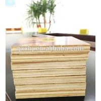 Wholesale 100% eucalyptus plywood for outdoor construction