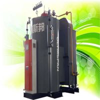 2Ton/hr Min 98% Efficiency Vertical Condensing Boiler