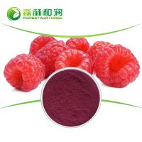 High Quality Concentrate Bulk Raspberry Extract
