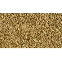 USA Hard Red Wheat