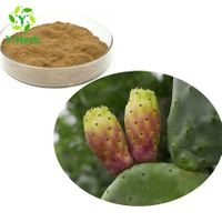 loss weight ingredients cactus extract powder 10:1 50:1 100:1 bulk opuntia ficus-indica extract