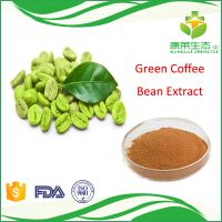 Factory Directly Selling Green Coffee Bean Extract Powder Chlorogenic Acid 50%