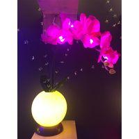 single butterfly flower light thumbnail image