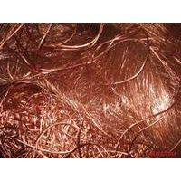 Copper Wire Scrap for Sale