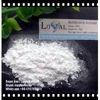 Anabolic Steroid AAS Boldenone Acetate Bold Ace 99%Purity Raw Powder Cutting Cycle bodybuilding