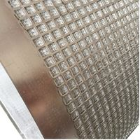 Stainless Steel Square Hole Sintered Wire Mesh / punched plate mesh for filtration thumbnail image
