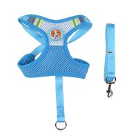 Embrodery logo dog harness and lead for small dog thumbnail image