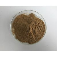 High Quality Ashwagandha Root Extract Powder Withanolide 1.5%~3%
