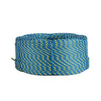 High Quality Polypropylene Telstra Rope 6mm