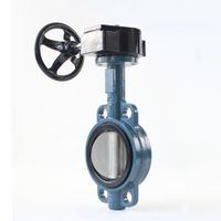 Worm Gear Wafter Butterfly Valve thumbnail image