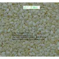 CE approved sesame peeling machine
